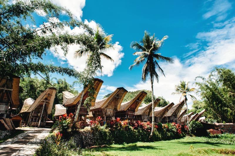 Desti - Sulawesi,Toraja