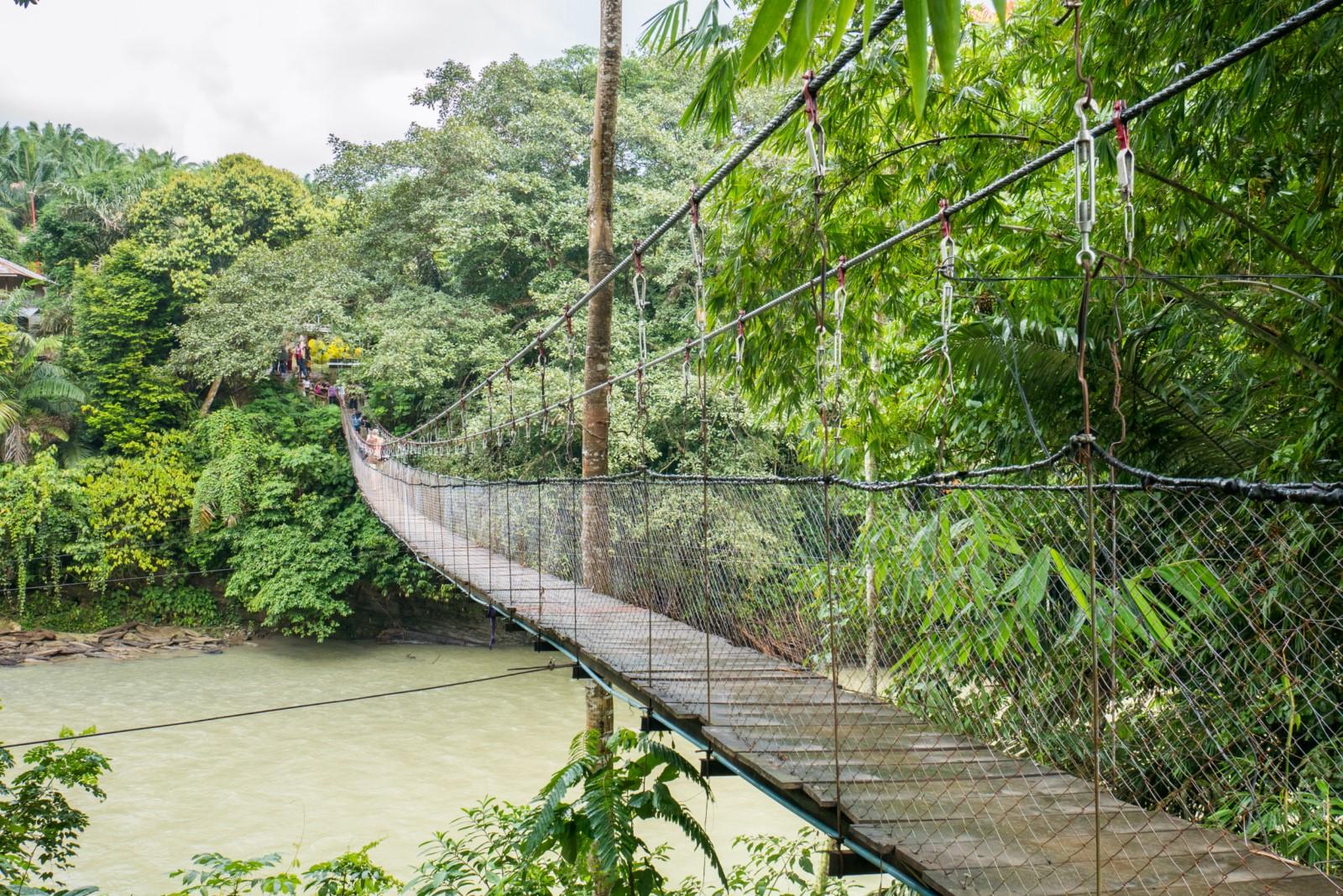 Tangkahan Sumatra