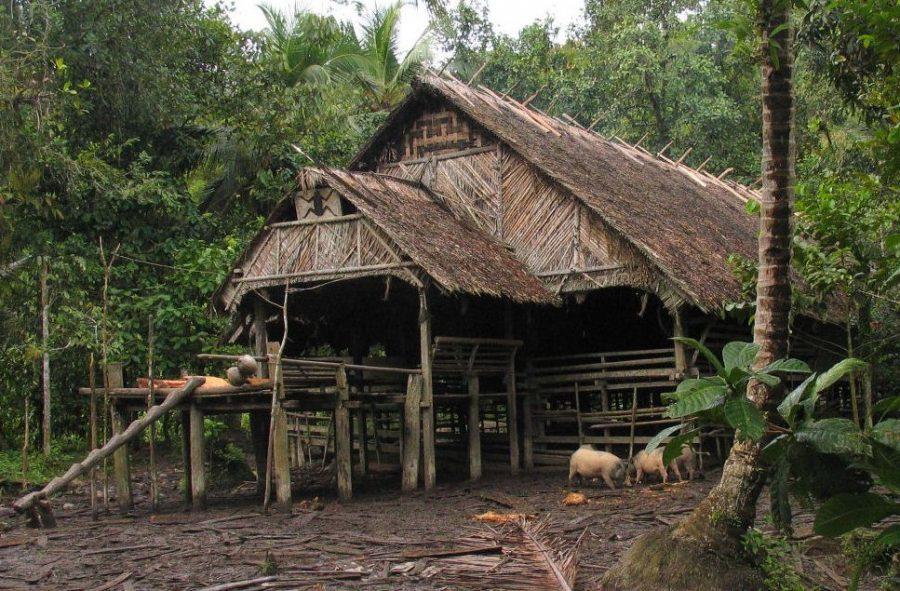 mentawai tribe house