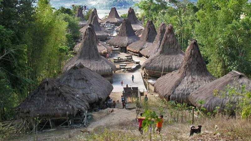 tarung village in waikabubak area