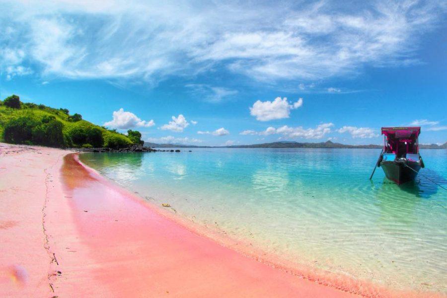 pink-beach-flores