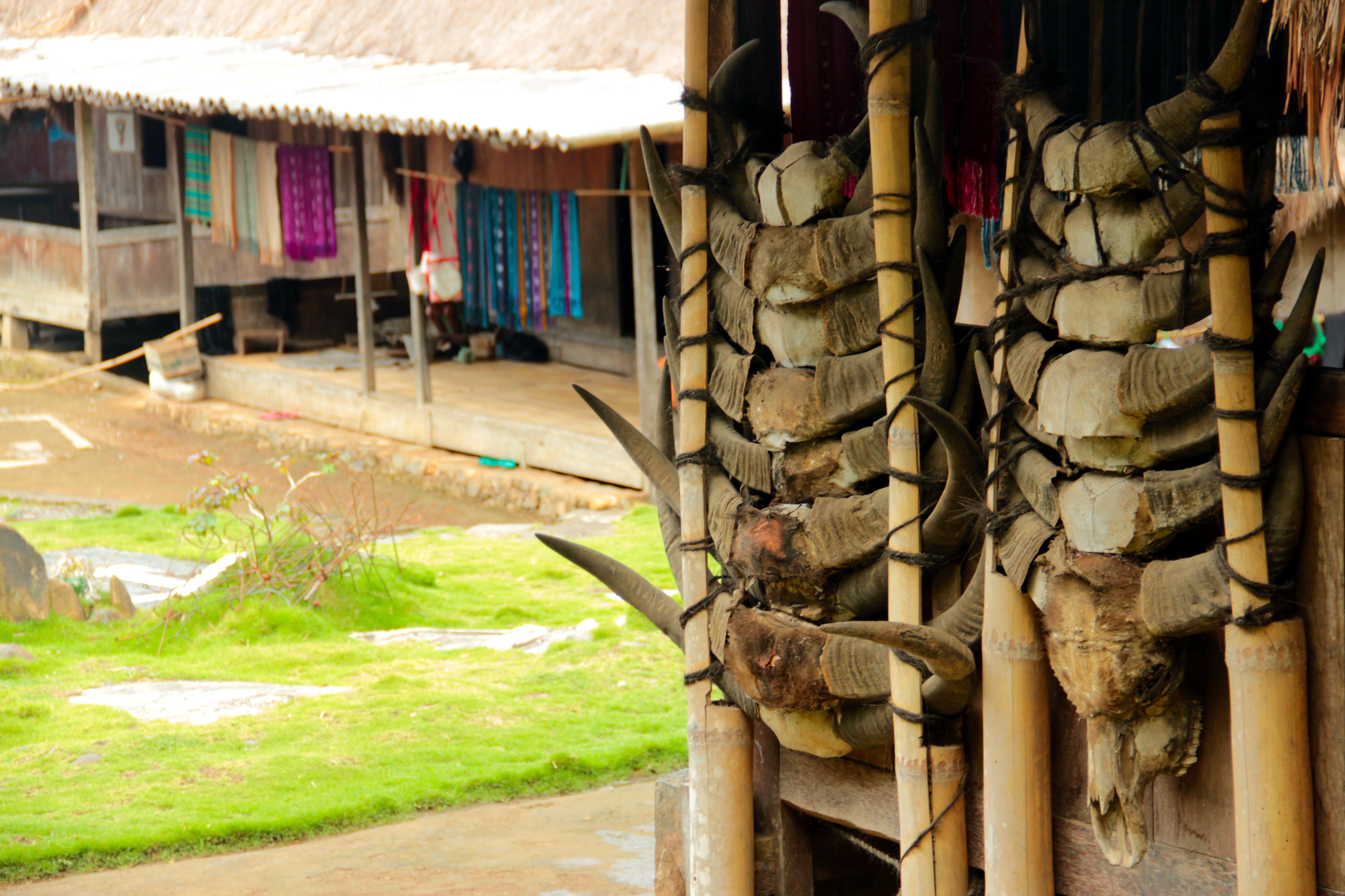 Megalithic Villages Flores