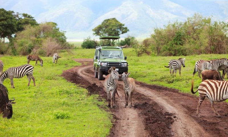 kenya eco tourism destination