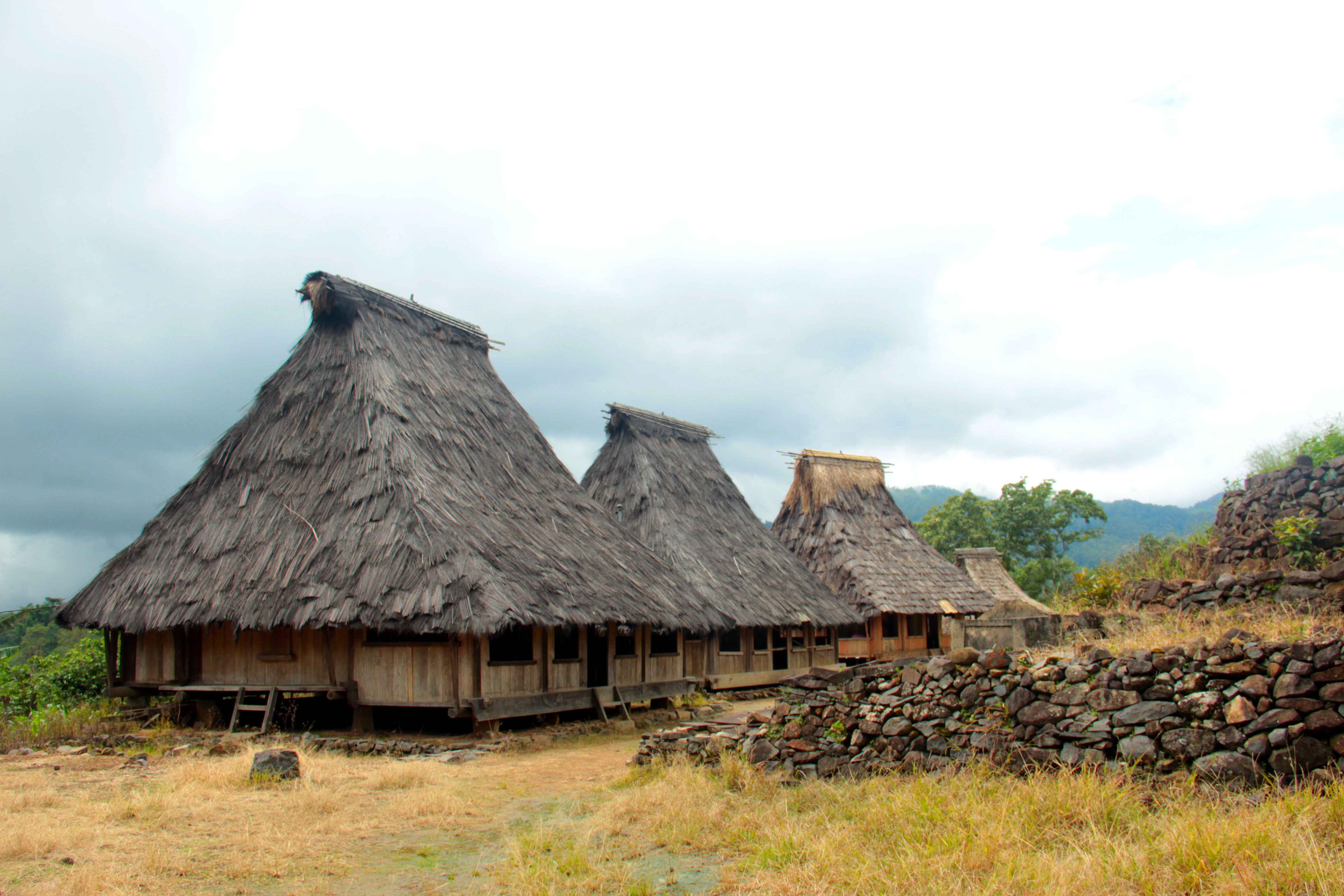 traditional Village Flores