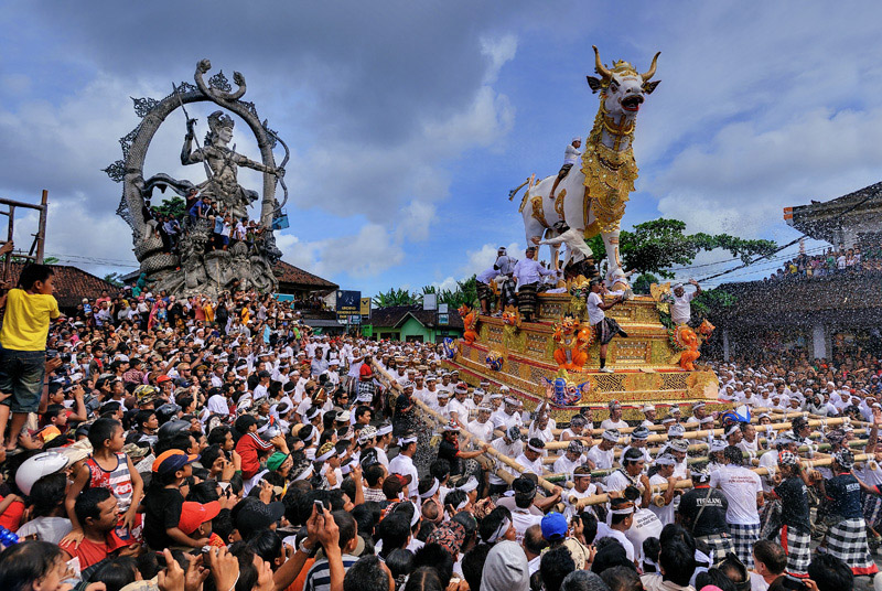 cremation ceremony in bali ngaben