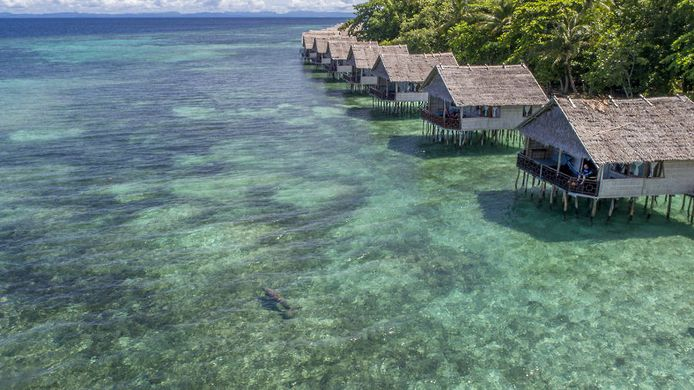Papua Eco Paradise