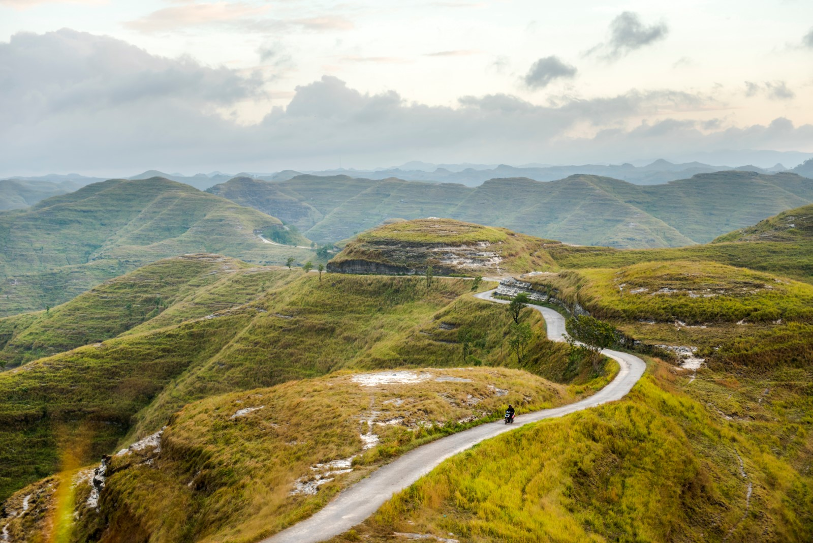 Green hills sumba