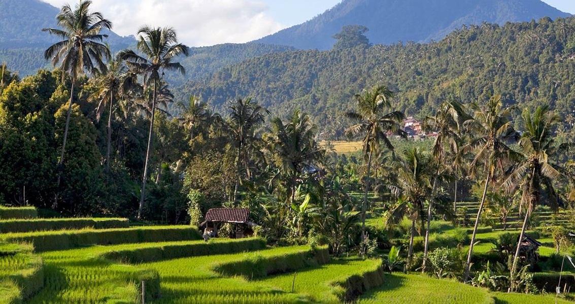 munduk scenery