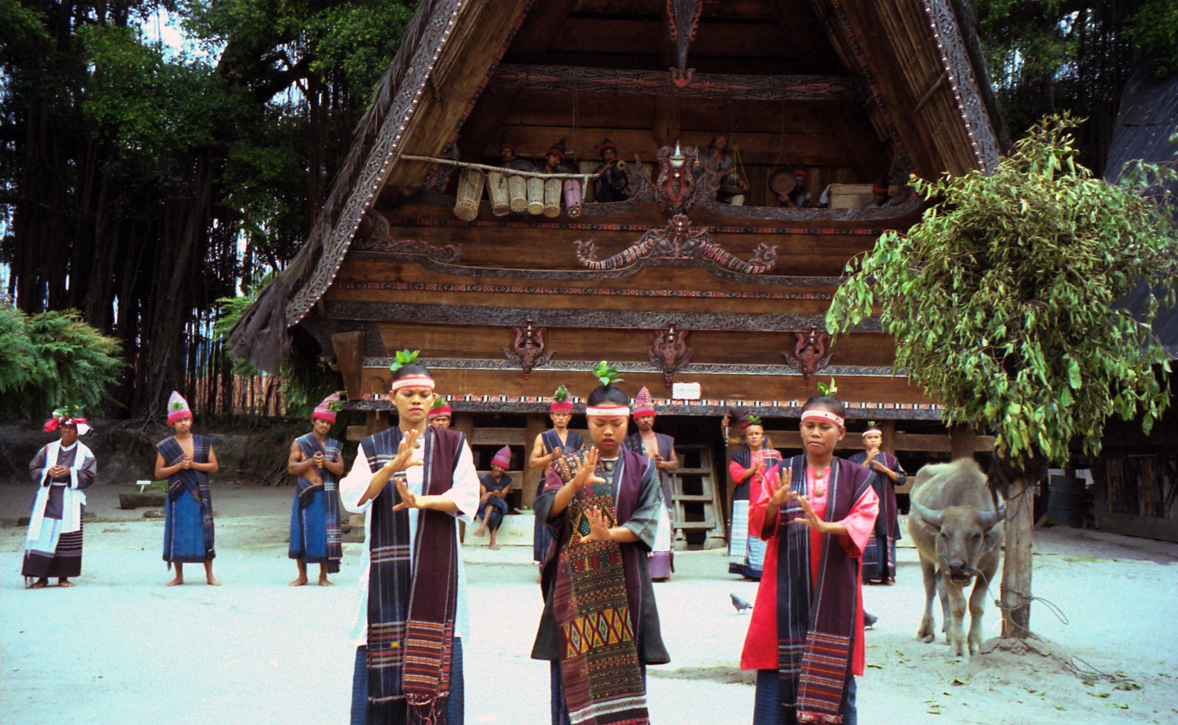 north sumatra batak tribe