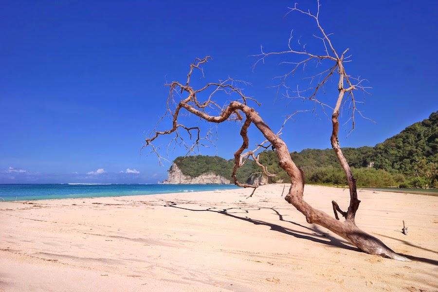 sumba Tarimbang Beach