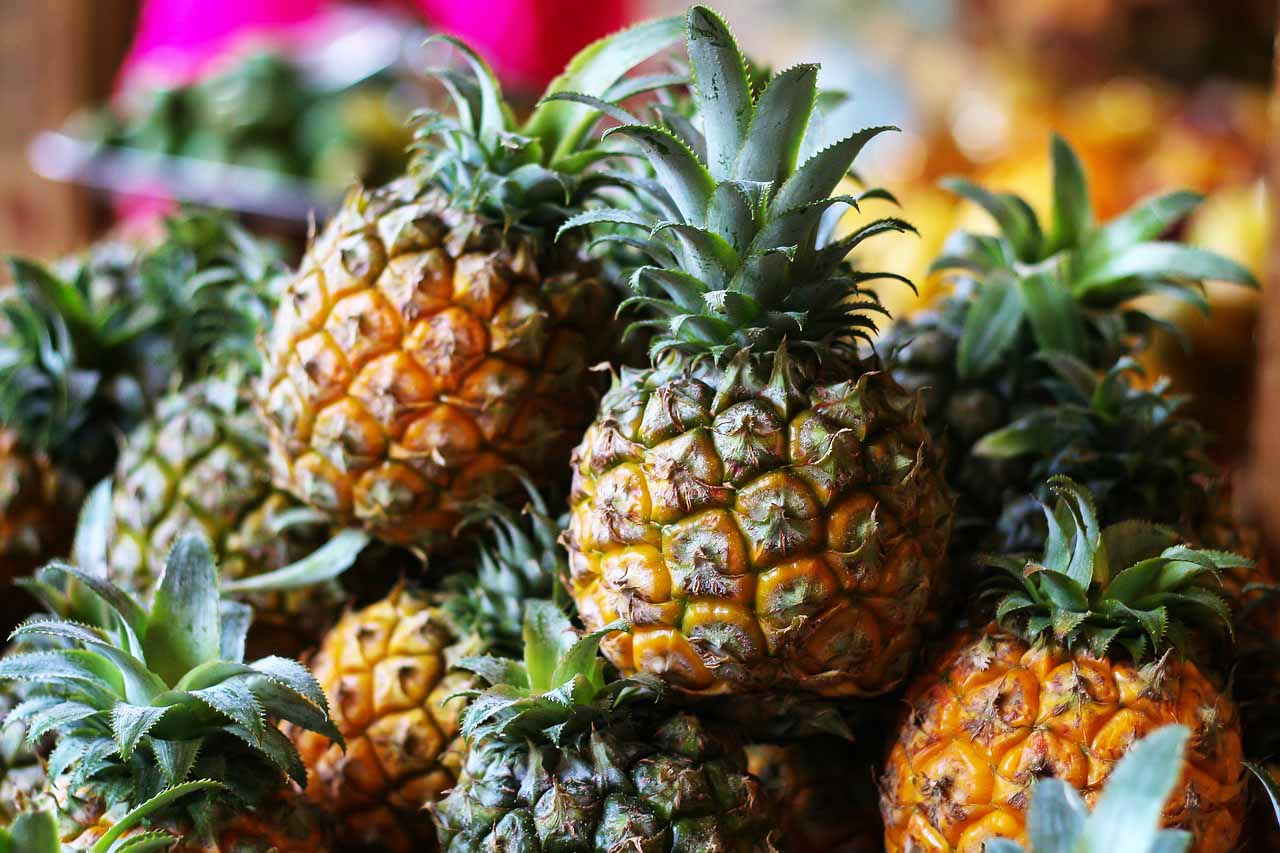 tasty Flores Pineapple