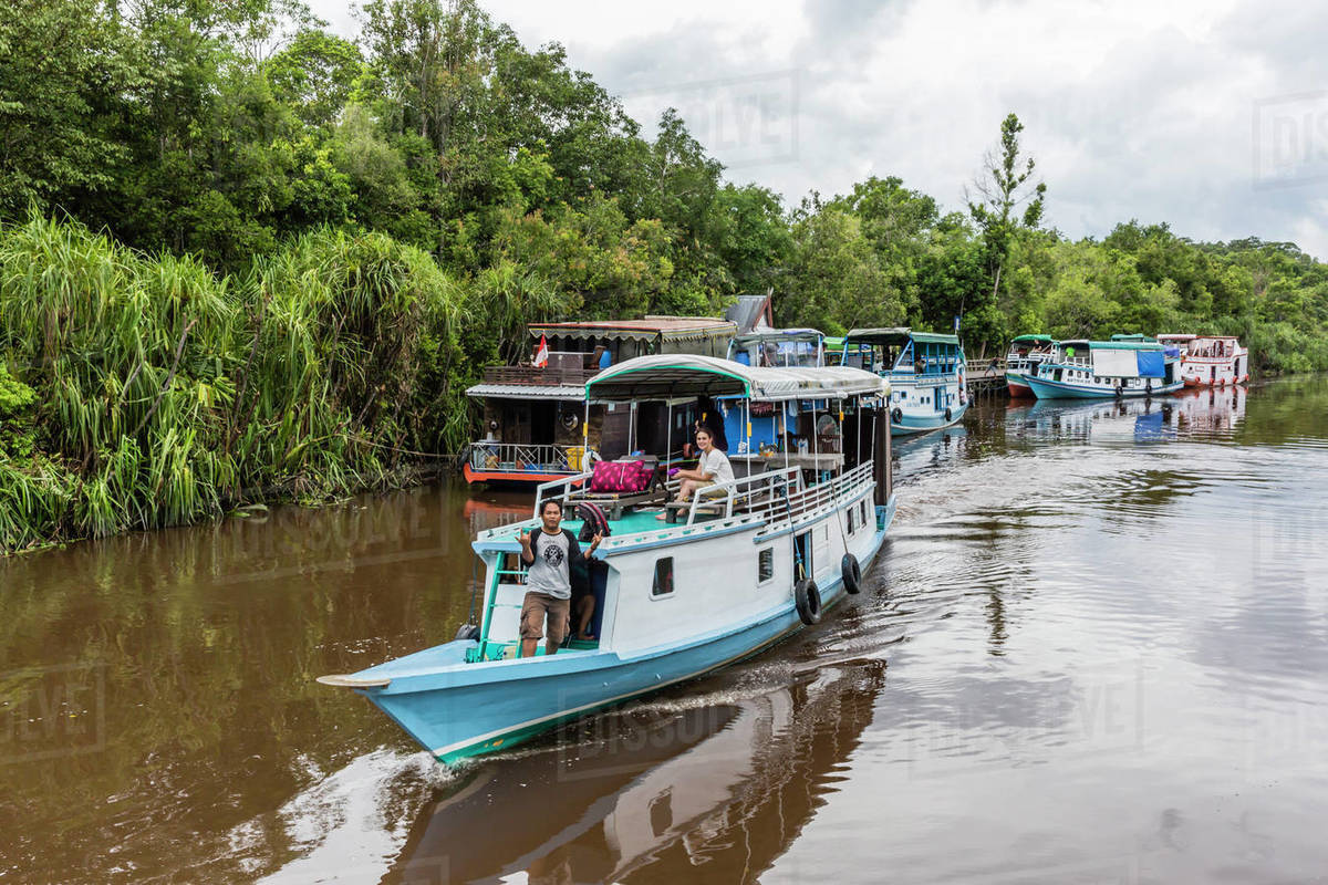Explore the Borneo Rainforest by Boat