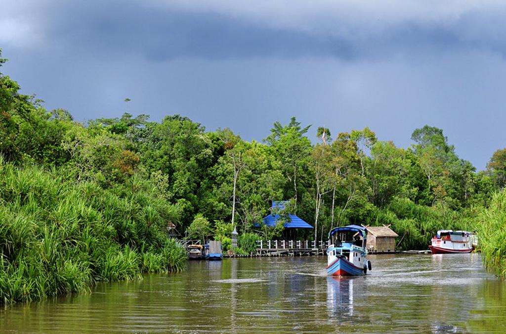 sekonyer-river-Tanjung Puting National Park
