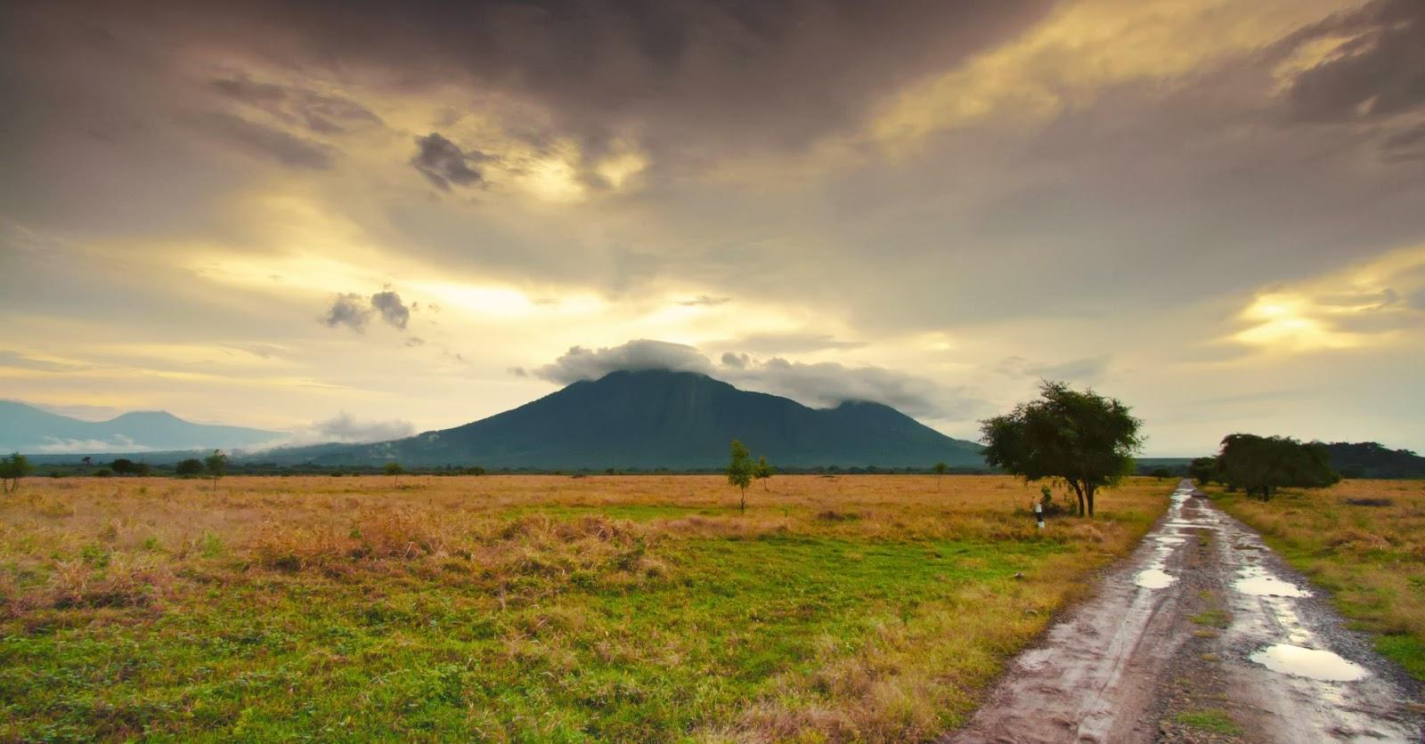 Baluran National Park, East Java