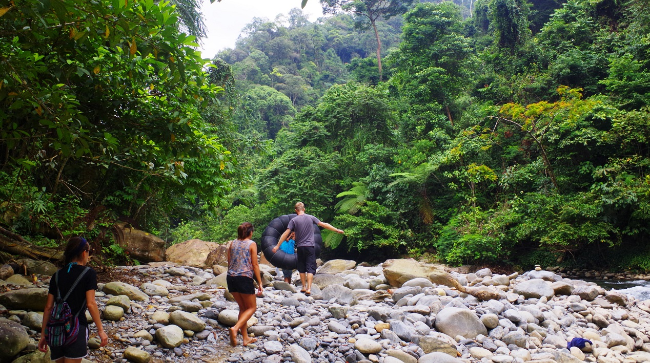 Trekking at Gunung Leuser National Park