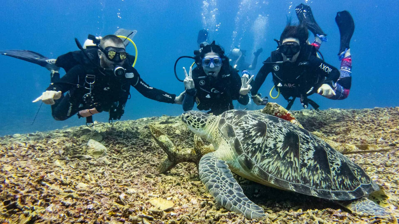 diving is the best things to do in gili meno