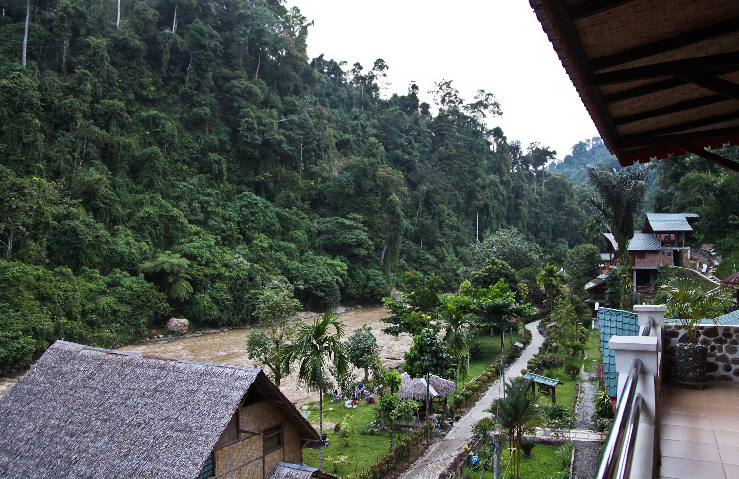 accomodation near the river in leuser national park