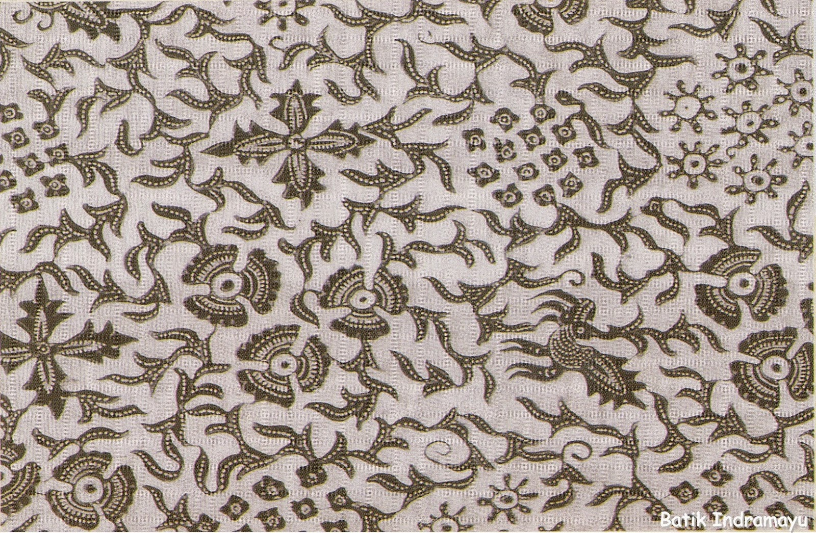 beautiful Indramayu Batik pattern