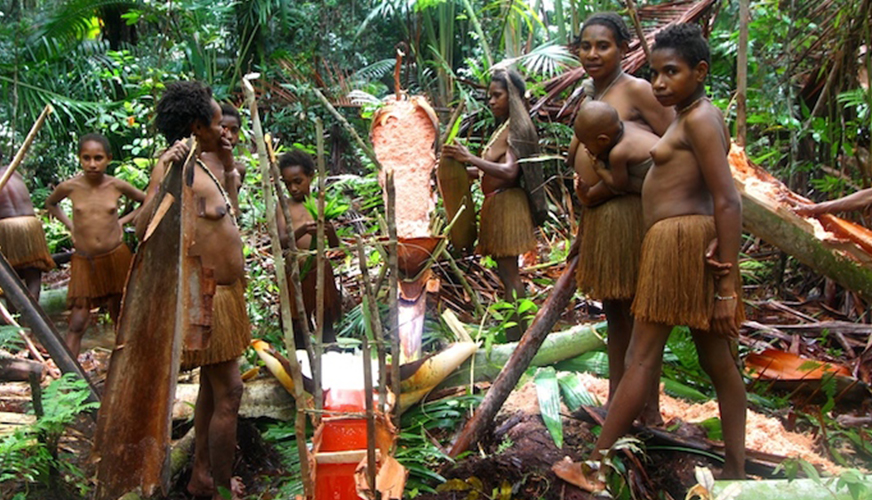 what you need to know about korowai people customs