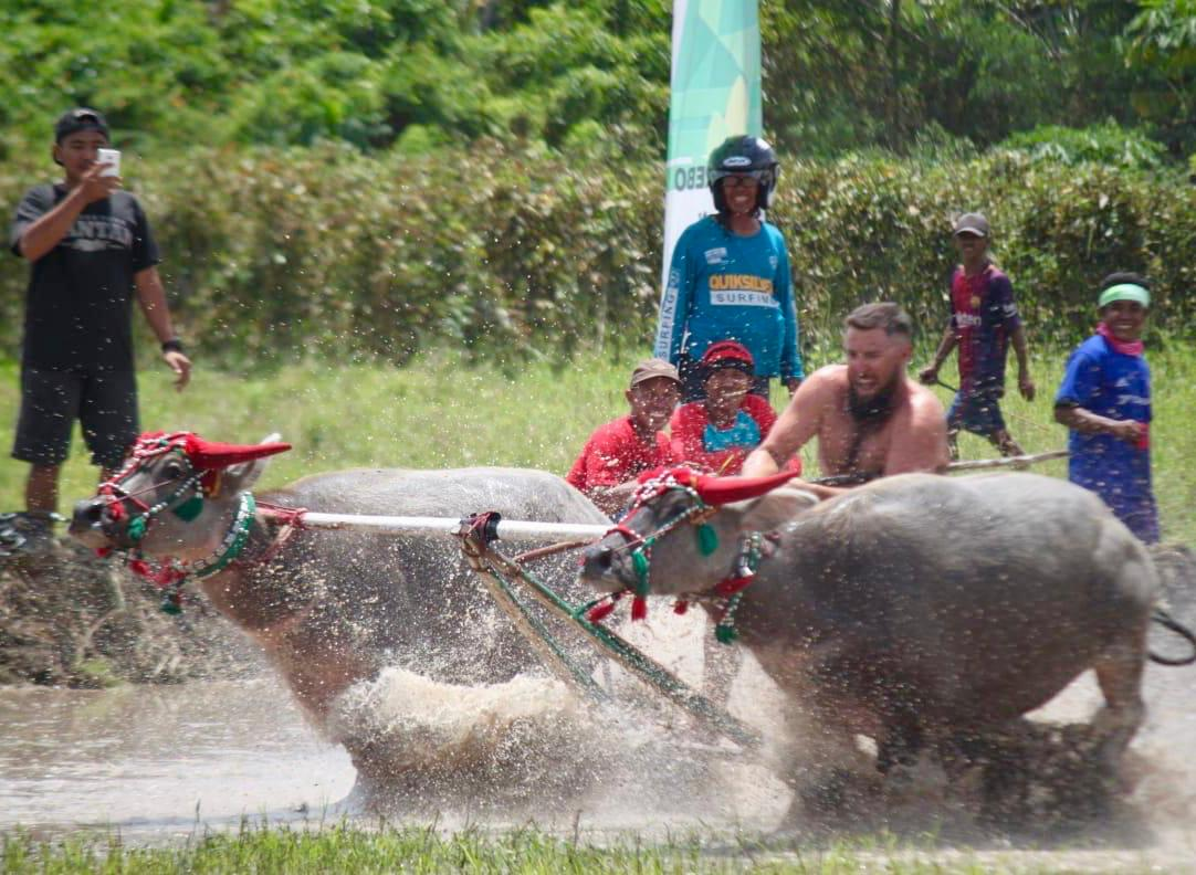 bull race competition in moyo festival