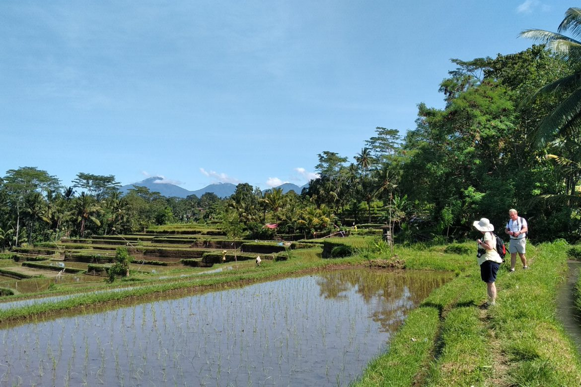 trekking in rural bali area