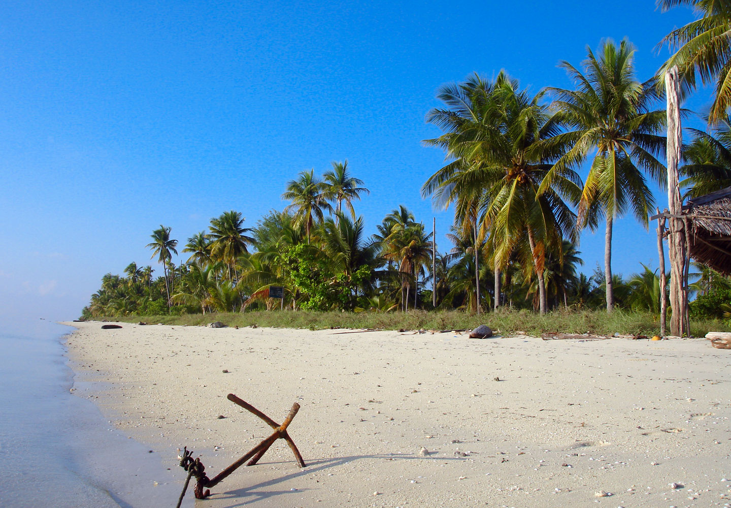 Enjoy the Tranquility at Hoga Island Beach