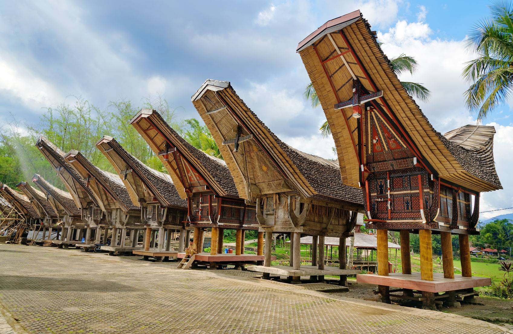 exotic land of tana toraja in sulawesi
