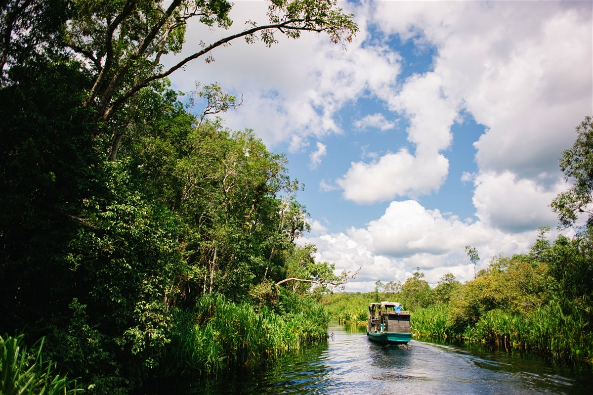 river cruise in tanjung puting national park