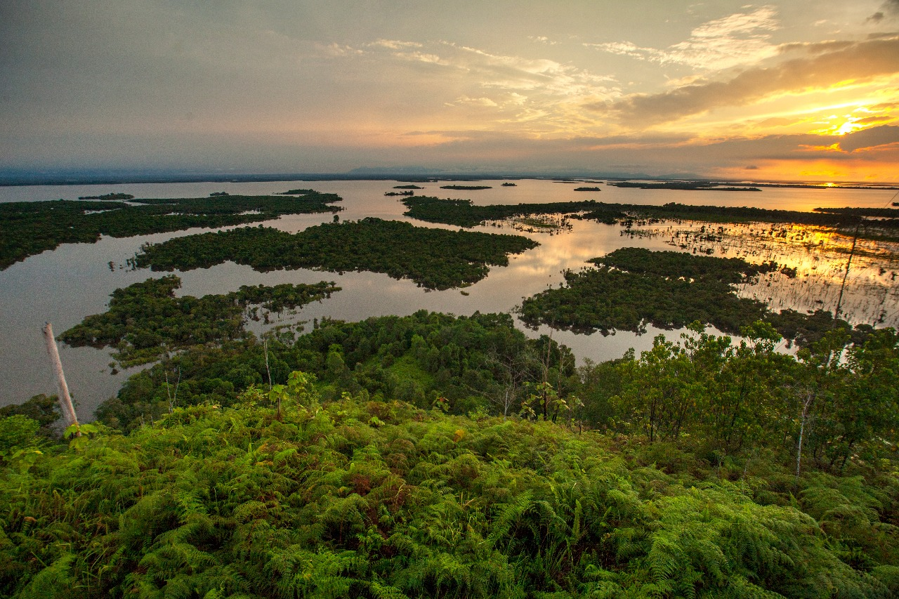 sentarum national park lake in borneo
