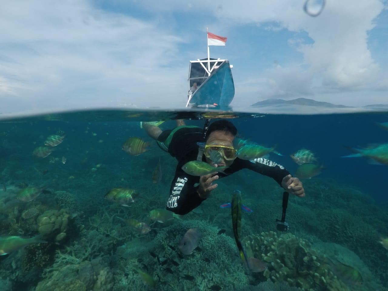 Explore the underwater world of Karimunjawa
