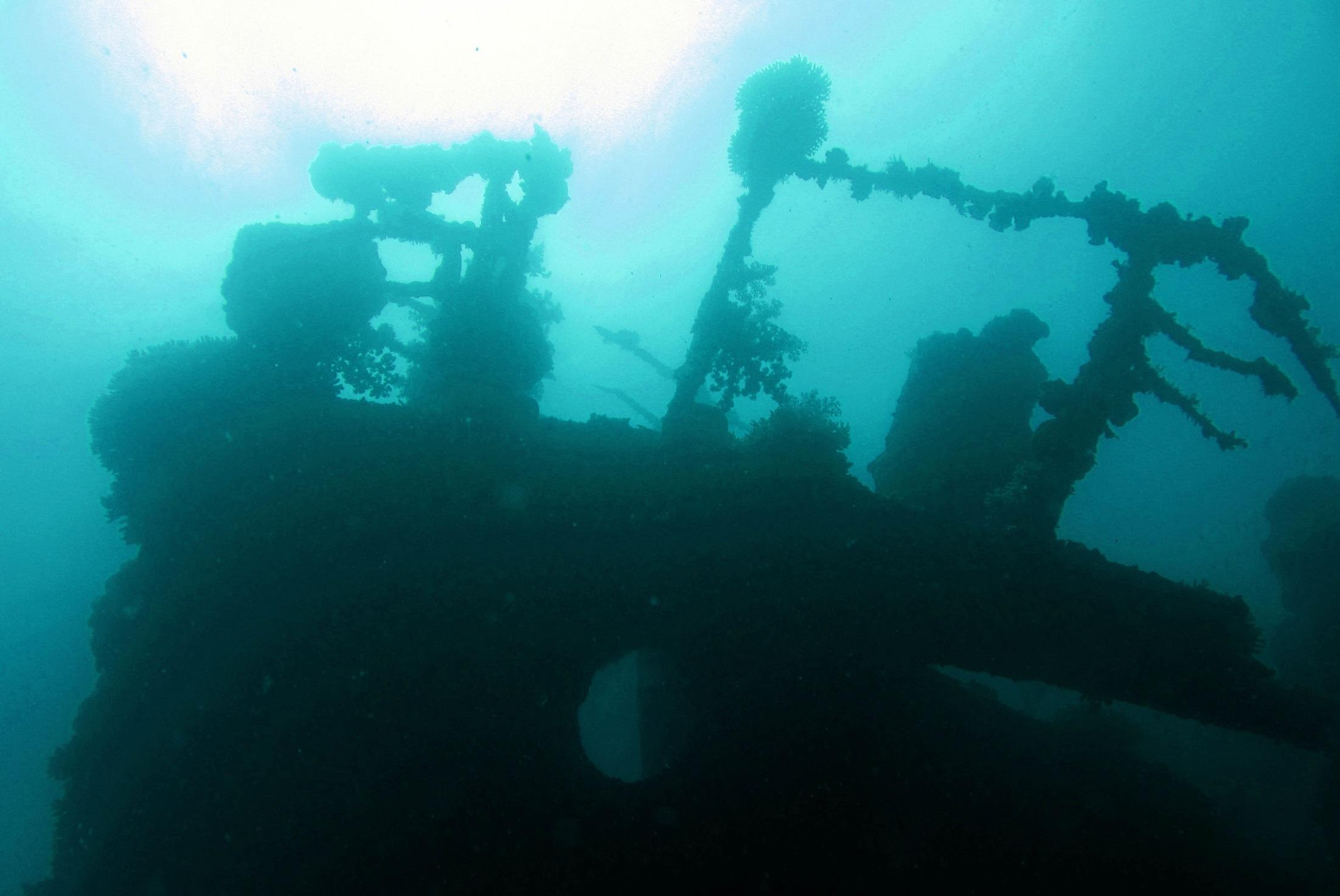 Exploring ship wreck on Kemujan Island