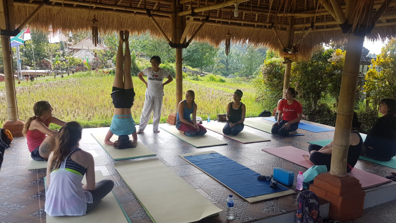 bali lifestyle retreats & yoga
