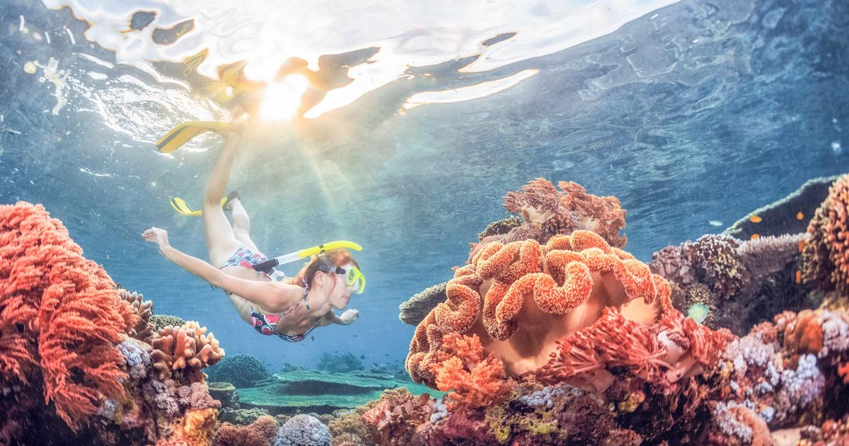 bali snorkeling activity