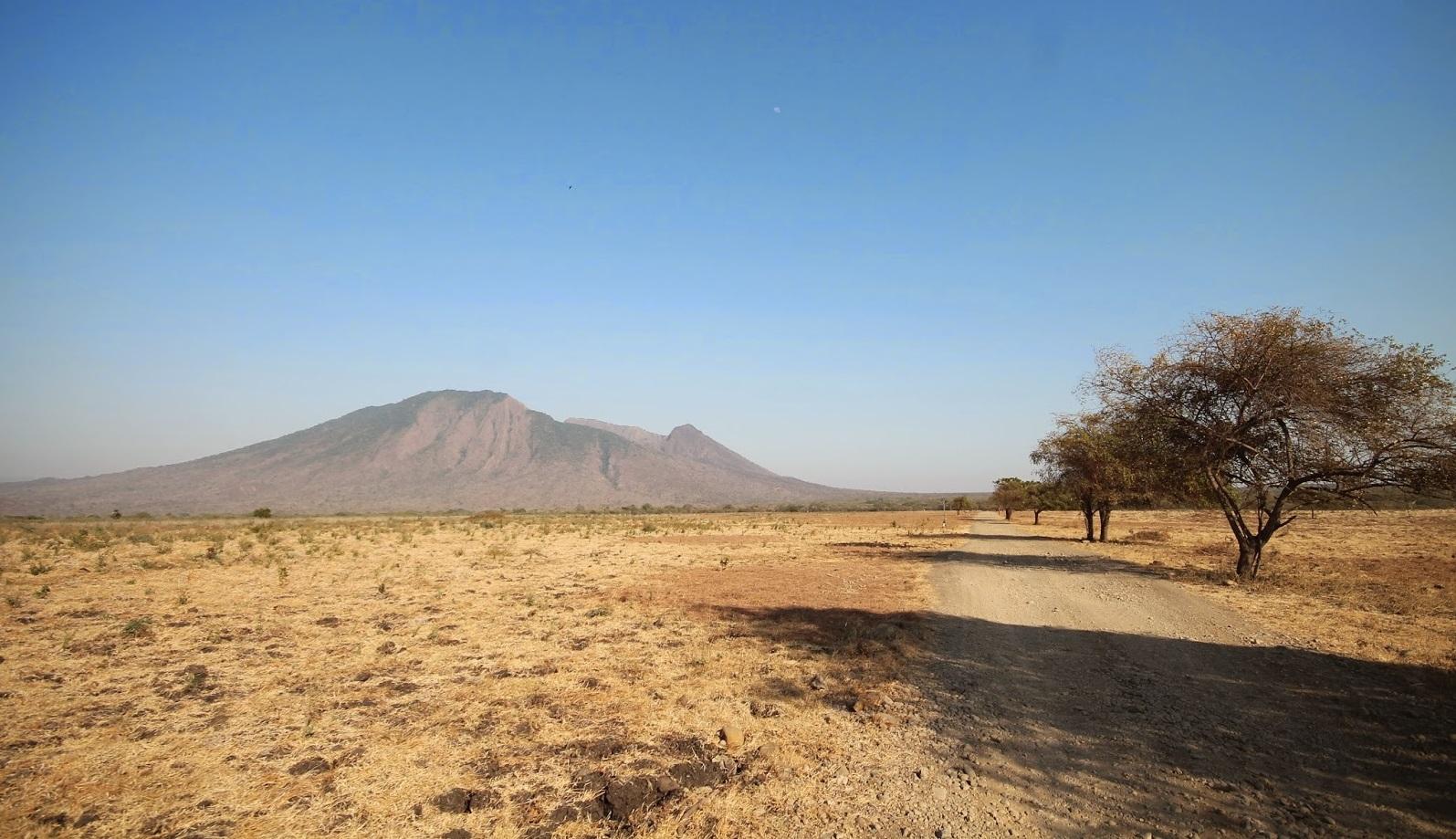 bekol savanna in baluran