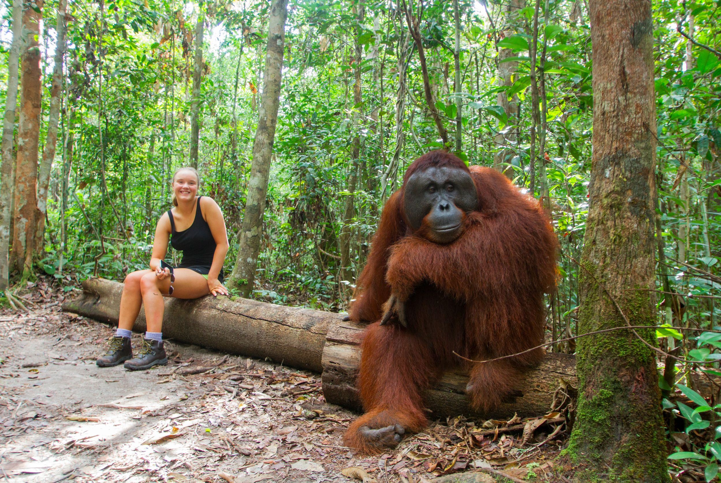 explore camp leakey in borneo