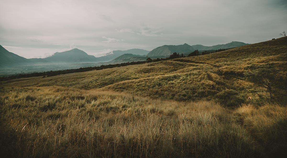 sembalun savanna in rinjani