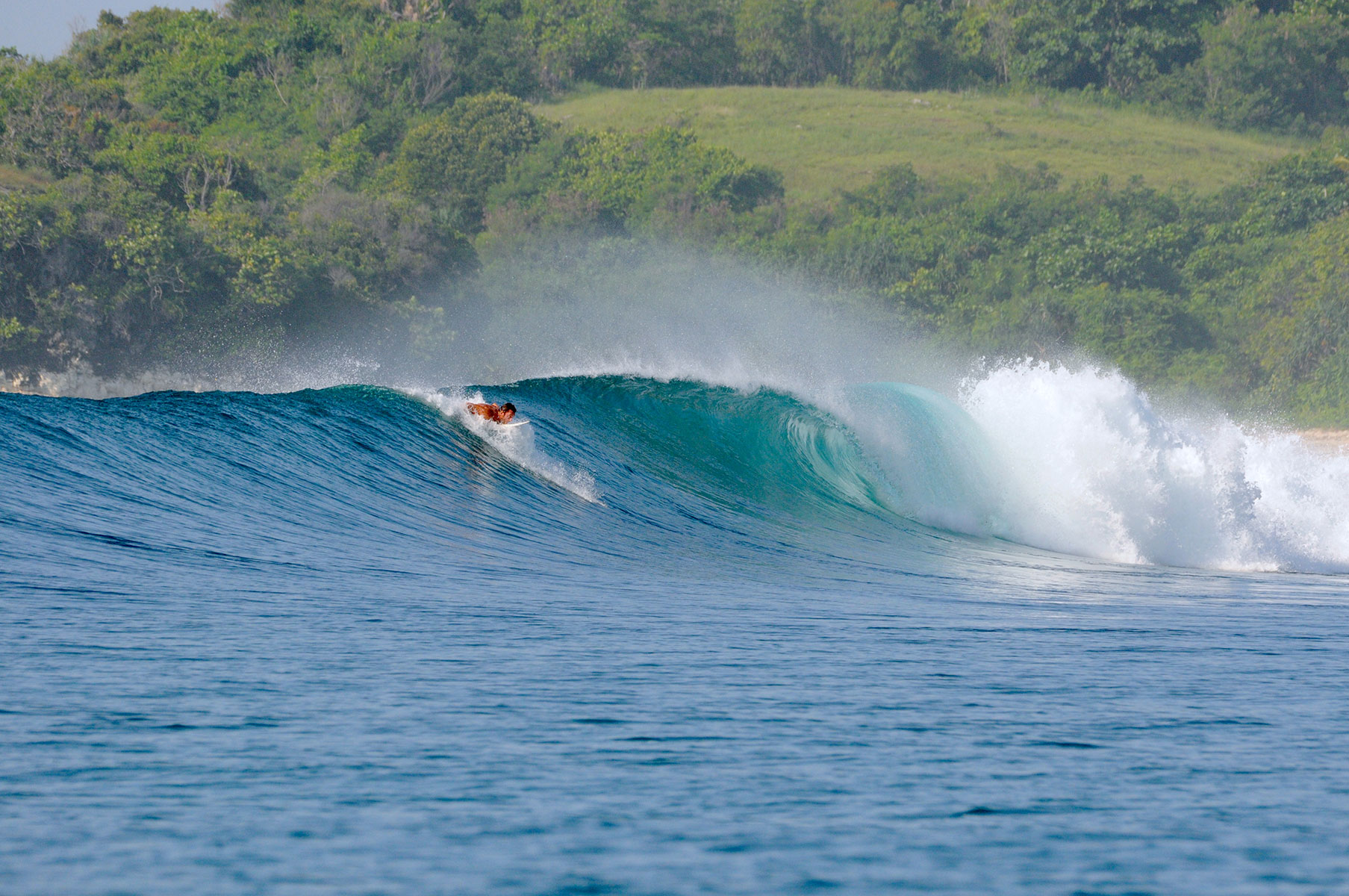 surfing in sumba