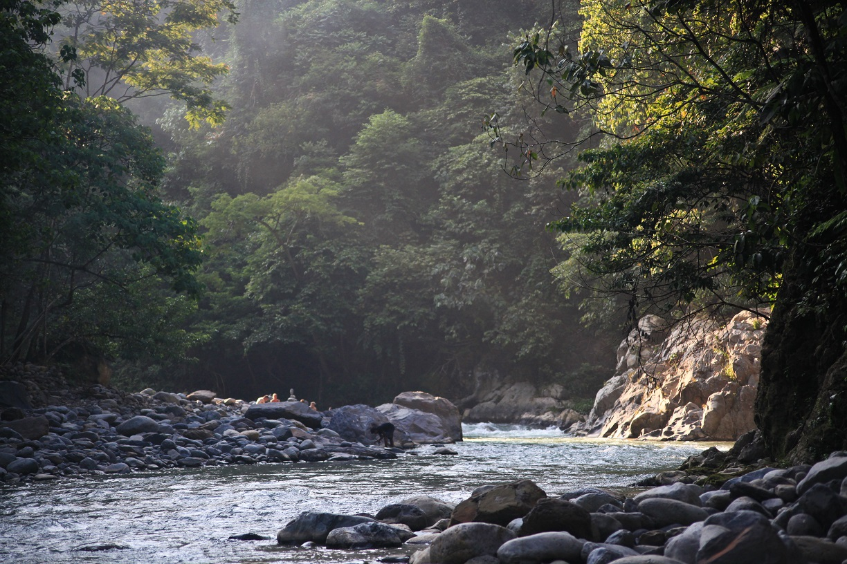 Mount Leuser National Park trekking journey