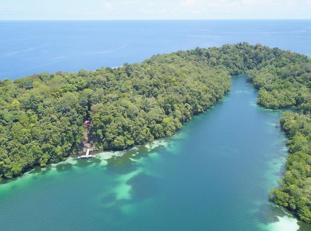 kakaban lake where the jellyfishes live