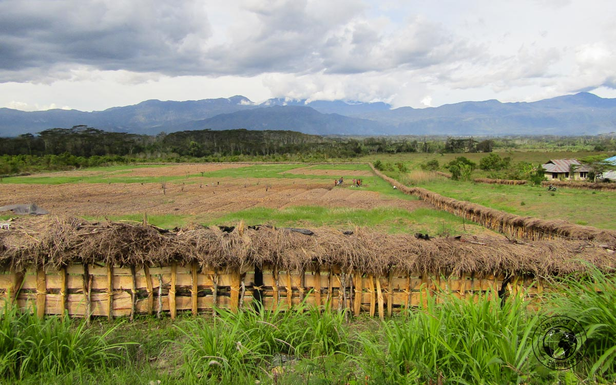 trekking to baliem valley in papua