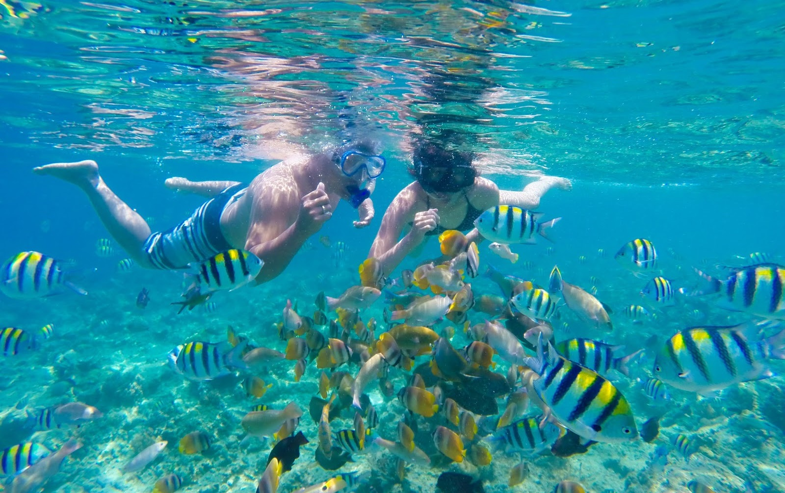 The snorkeling spot on Gili Nanggu is on the eastern part of the island