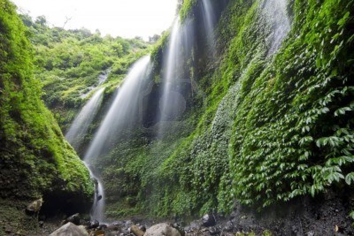 madakaripura waterfall in bromo tengger semeru national park area