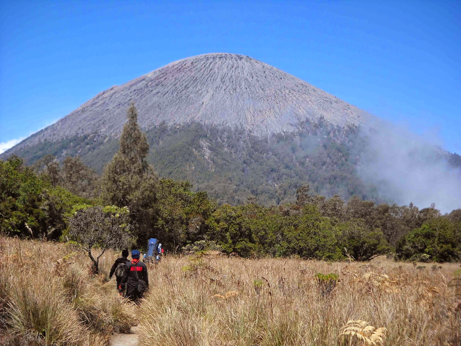 mount semeru trekking activity in bts national park