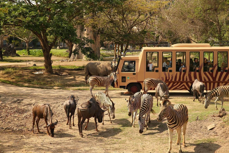 bali safari marine park is one of best zoos in indonesia