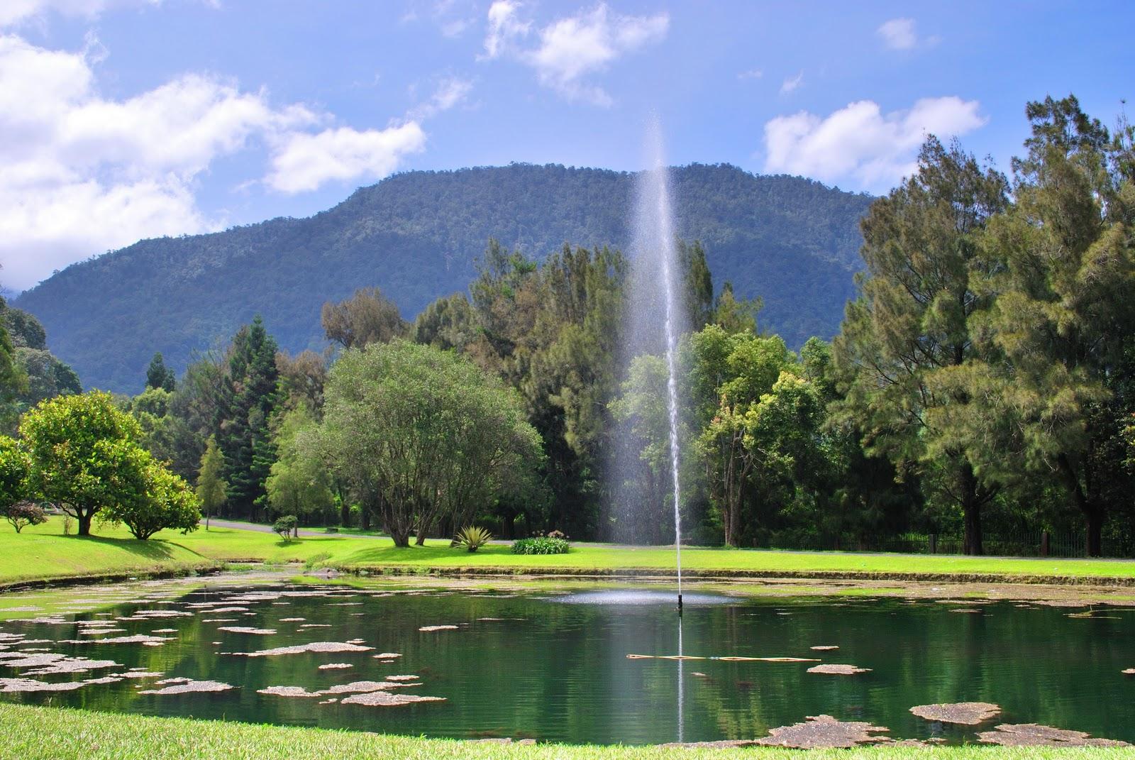 cibodas botanical garden in cianjur west java