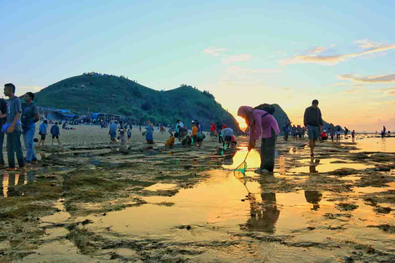 hunt for nyale sea worms in bau nyale festival