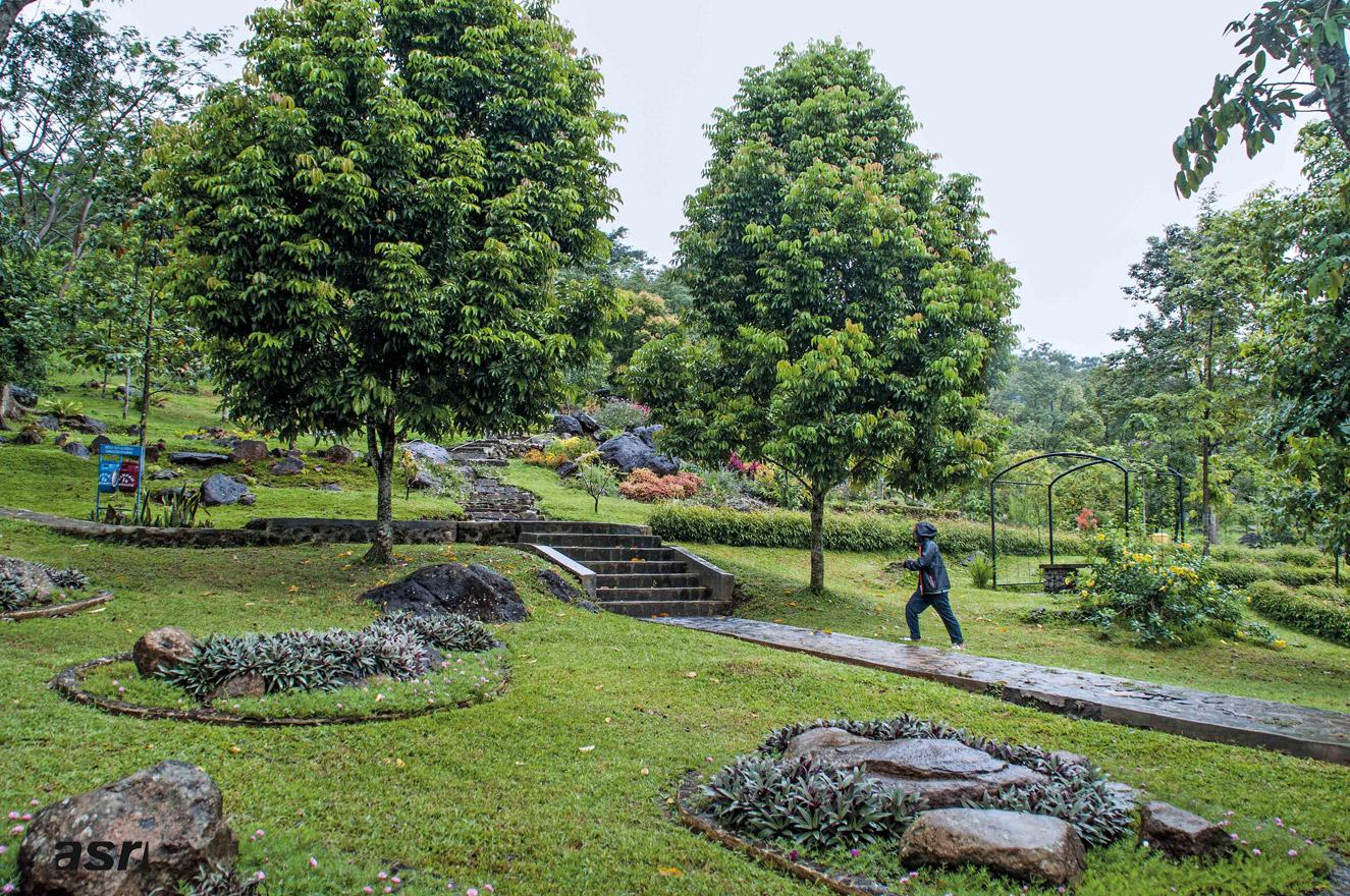 kuningan botanical garden in west java