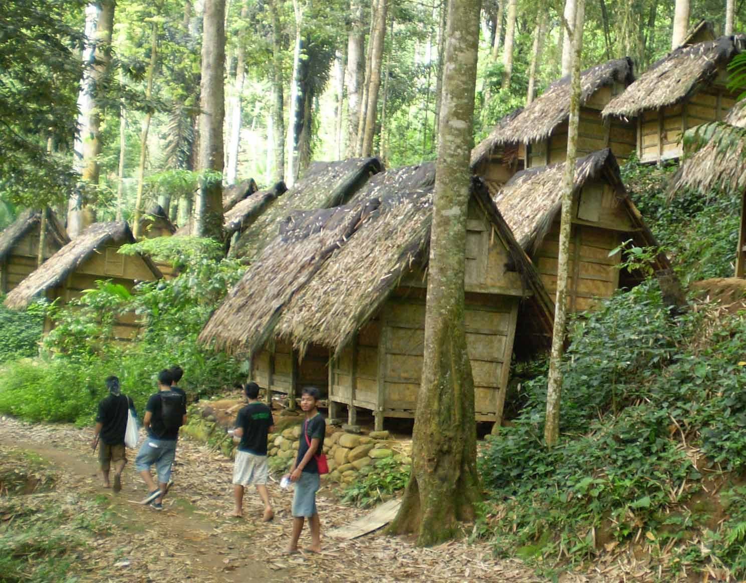 traditional baduy tribe houses