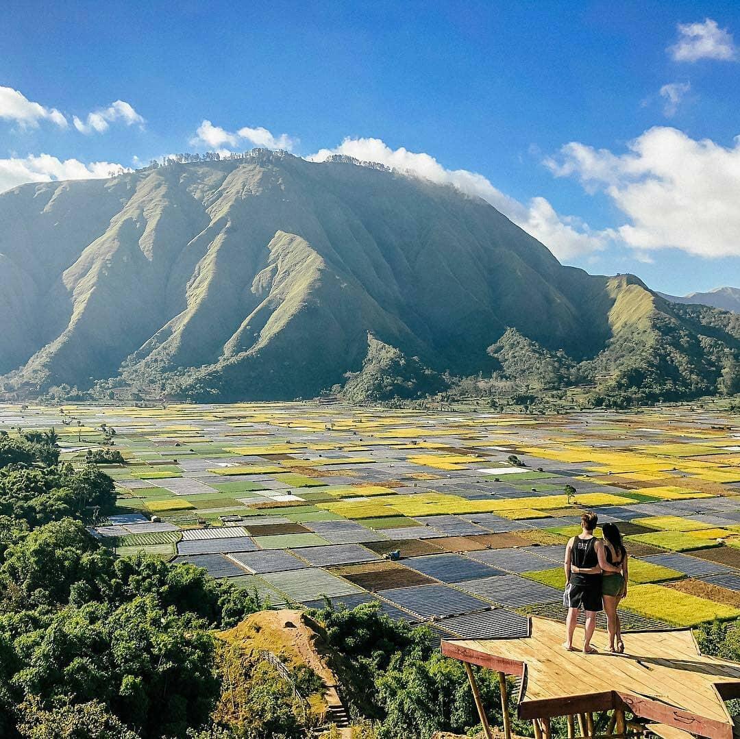 Pergasingan Hill terrace in Lombok