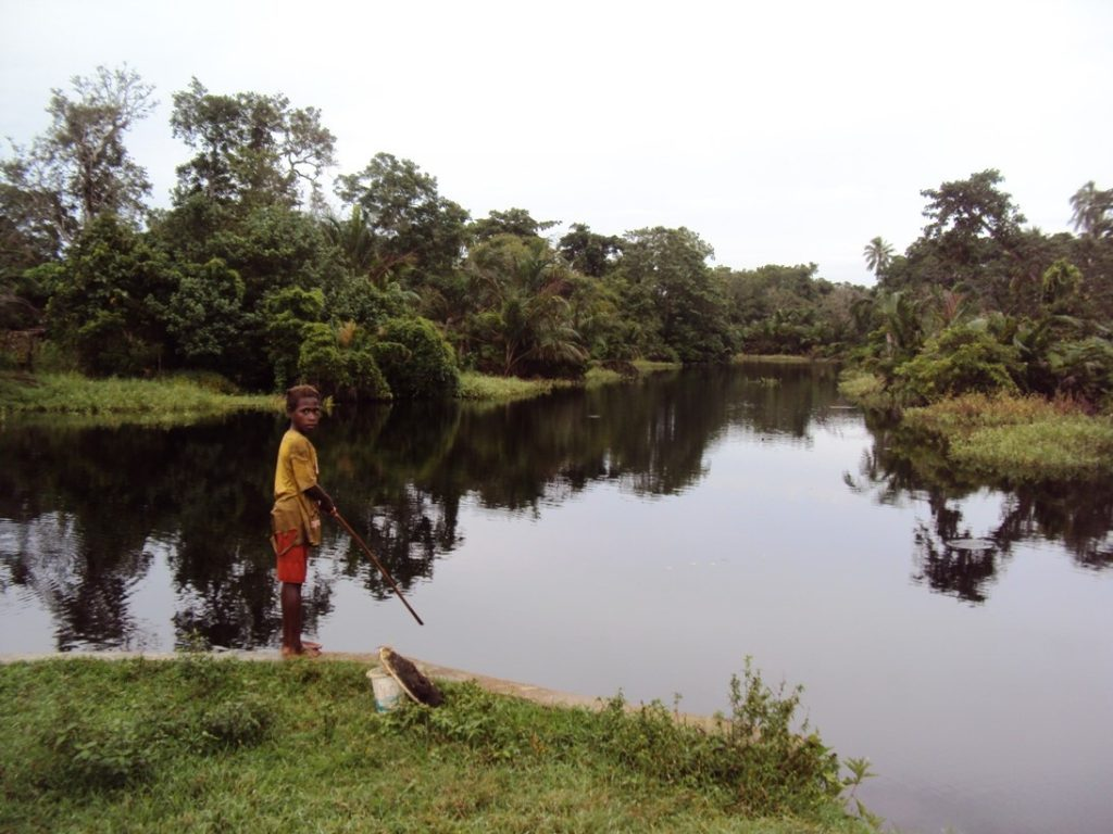 Wasur National Park is part of the largest wetlands in Papua
